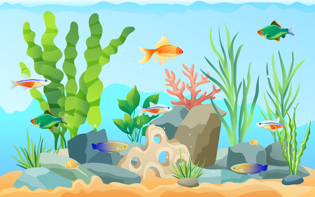 Hand drawn aquarium with fish and seaweed. Goldfish and neon tetra, green tiger barb and blue striped tamiran wrasse swimming among underwater plants