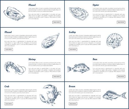 Ensemble d'affiches de moules et d'huîtres. Coquilles Saint-Jacques et crevettes marines. La dorade et le crabe de bar avec des titres et un exemple de texte illustration vectorielle
