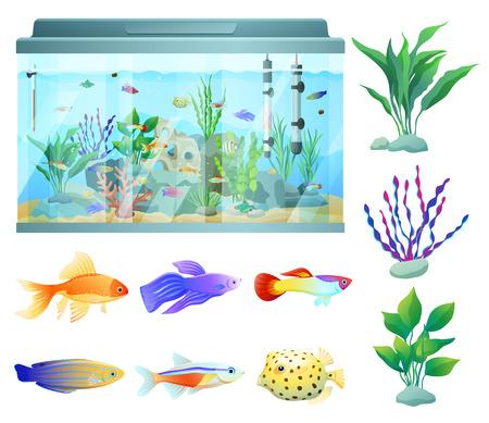 Acuario en la ilustración de Vector de envase de vidrio