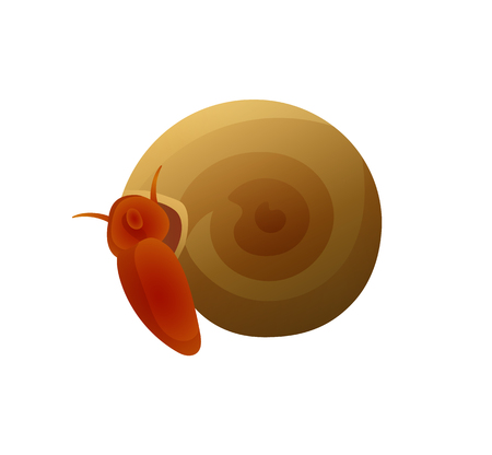 Small Brown Snail with Round Shell Colorful Poster 写真素材 - 111002925