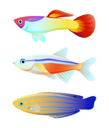Aquarium fish silhouette isolated on white icons