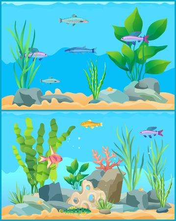 Affiche de promotion de jeu de poissons d'aquarium de dessin animé coloré