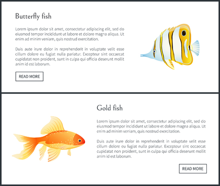 Butterfly and Gold Fish Landing Page with Text Foto de archivo - 111003600