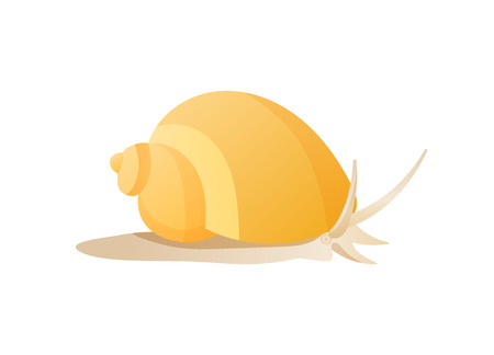 Snail Isolated on White Background Vector Poster Stok Fotoğraf - 111003613