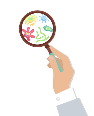 Bacteria in Magnifying Glass Vector Illustration Illusztráció