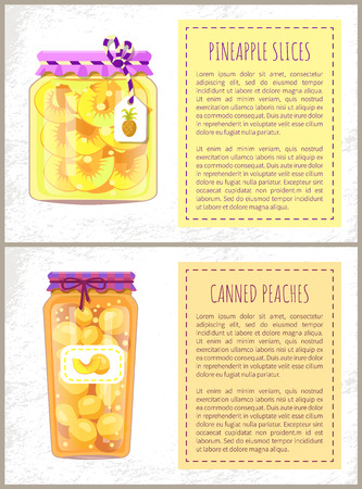 Pineapple Slices and Peaches Vector Illustration 写真素材