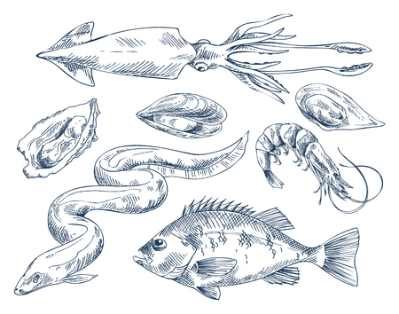 Seafood Vector Monochrome Illustration for Poster