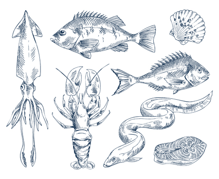 Salmon and perch, squid and eel sea delicacy, crayfish river and edible mussel vector illustration monochrome icon set for seafood restaurant poster.