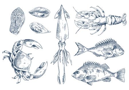 Ensemble de style de croquis d'illustration vectorielle de délicatesse de la mer