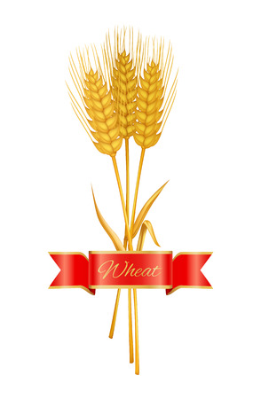 Golden Wheat or Barley Ears with Copy Space Poster Illustration