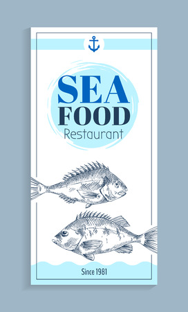 Bass or bream marine creature as seafood sketch style flat vector illustration. Nautical information poster with white and blue spots, text sample