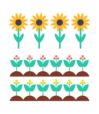 Sunflower and Berry Bush on Garden Bed Vector Set Illustration