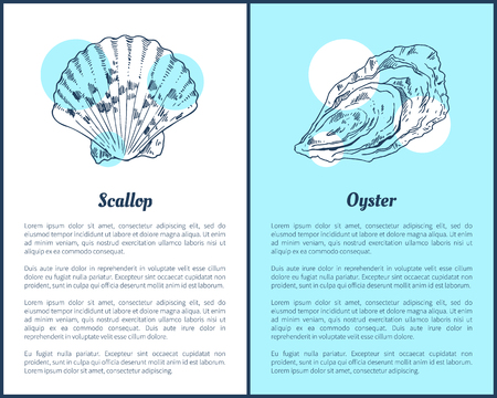 Scallop and Oyster Marine Creatures Poster