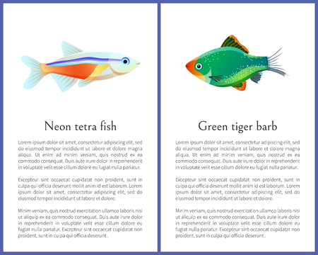 Green Tiger Barb and Neon Tetra Fishes Posters 일러스트