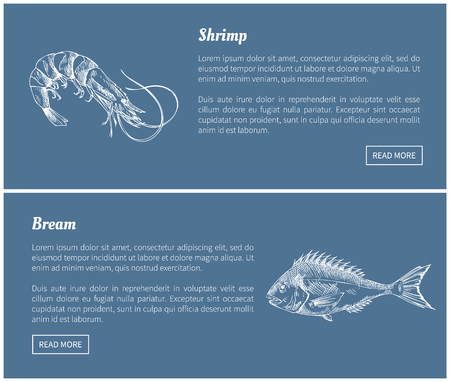 Schrimp and bream marine products vector illustrations in sketch style. Dark blue landing page with text sample. Great for seafood fish market design