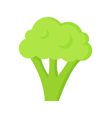 Broccoli healthy useful food isolated icon vector. Health and lifestyle with eating eco meal vegetables. Green veggie nutritious and rich in vitamins Illustration