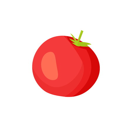 Pickled tomato icon closeup. Agricultural product red vegetable conservation. Healthy nutrient round shaped sour product with seeds isolated on vector