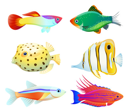 Aquarium fish silhouette isolated on white icons