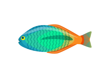 Rainbowfish aquarium fish isolated on white icon