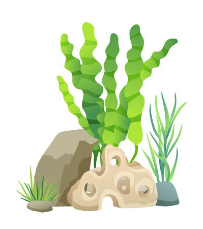 Green Vegetation of Deep Sea Vector Illustration