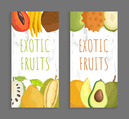 Exotic fruit menu vector cover template for restaurant and cafe. Mamey and citron, marang and ambarella, kivano and avocado, soursop and melon vector Illustration