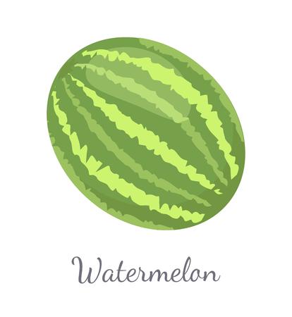 Watermelon Citron Melon Berry Ripe Tropical Fruit