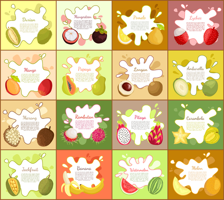 Durian, and Mangosteen Pomelo Vector Illustration Illustration