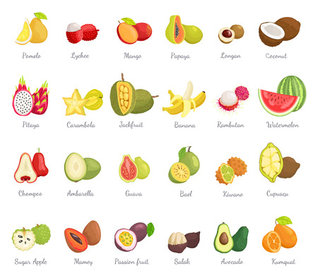 Kiwano Coconut and Banana Set Vector Illustration Illustration