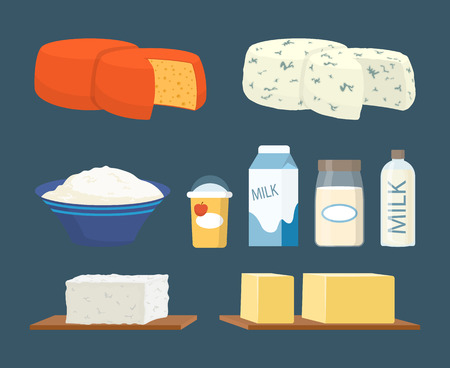 Milk and Cottage Cheese Set Vector Illustration