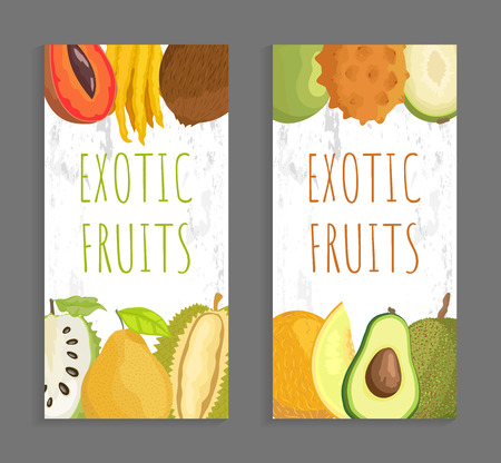 Exotic fruit menu vector cover template for restaurant and cafe. Mamey and citron, marang and ambarella, kivano and avocado, soursop and melon vector Çizim