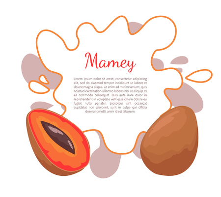 Mamey exotic juicy fruit vector poster frame and text. Edible food, dieting vegetarian banner. Mammea americana, mammee apple, mamey, tropical apricot Çizim