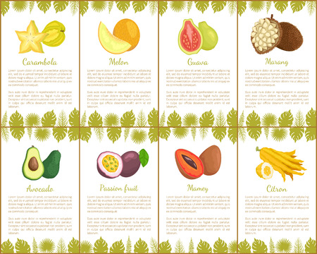 Carambola and watermelon set with poster and leaves decoration vector. passion fruit, citron and avocado, healthy product, marang and sweet guava