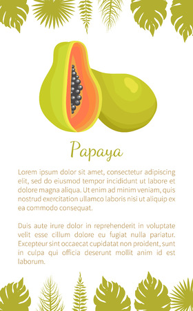 Papaya Exotic Fruit Vector Poster Text Palm Leaves