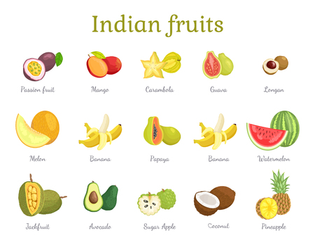 Indian Fruits Set India Food Vector Illustration Vettoriali