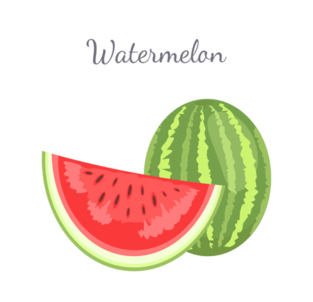 Watermelon or citron melon berry, ripe tropical plant whole and cut piece vector icon isolated on white. Food with seeds or seedless edible fruit