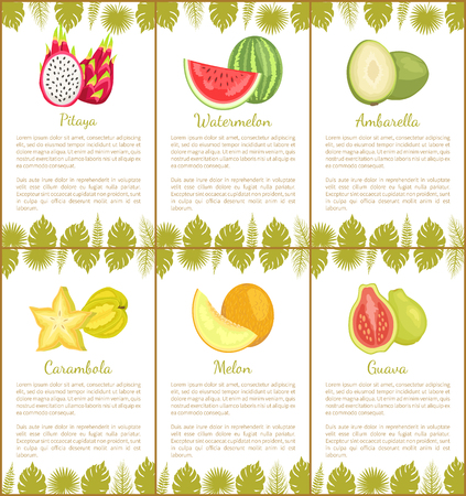 Papaya and Watermelon, Ambarella Carambola Poster