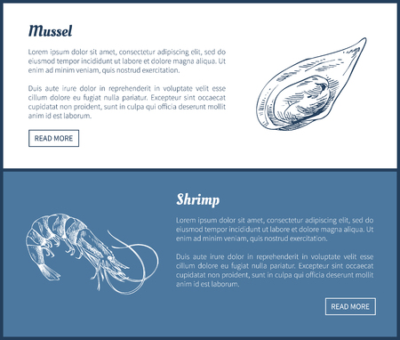 Mussel and Shrimp Vector Double Color Graphic