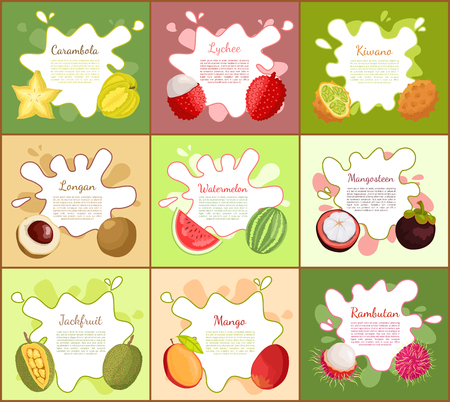 Carambola and Lychee Posters Vector Illustration