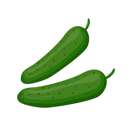 Cucumbers Fresh Vegetables Set Vector Illustration