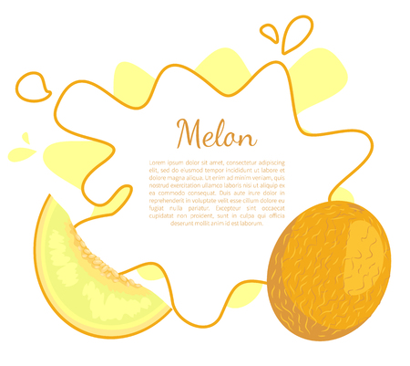 Melon poster with frame and place for text. Exotic juicy stone fruit vector isolated. Tropical sweet edible, fleshy food, dieting vector vegetarian
