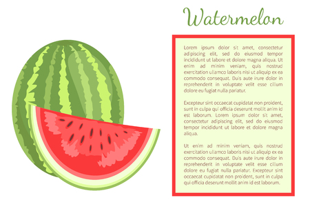 Watermelon or citron melon berry whole and cut, ripe tropical or subtropical plant vector poster frame for text. Food with seeds or seedless edible fruit