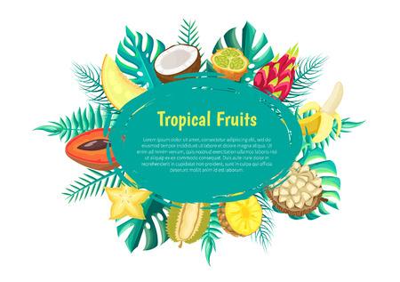 Melon and coconut, kiwano and pitaya, banana and marang, pineapple and durian, carambola and mamey oval frame. Tropical fruits banner with exotic food.
