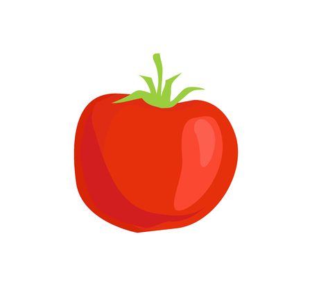 Red Tomato Isolated Vector Icon in Cartoon Style Illustration