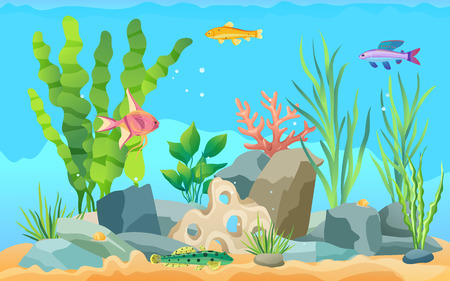 Different exotic fish species in blue water colorful poster. Tropical sea animals, green water weed, staghorn and stones flat vector illustration.