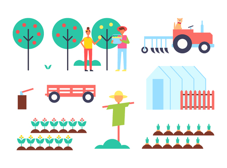 Greenhouse and tractor farming machinery and plantation. Fruit trees and farmers gathering harvest scarecrow and hothouse carrots in ground vector Stock Illustratie