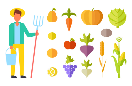 Harvester person with bucket and ripe vegetables. Harvesting season pumpkin and cabbage apple pears and tomatoes, beetroot and grapes, corn set vector 일러스트
