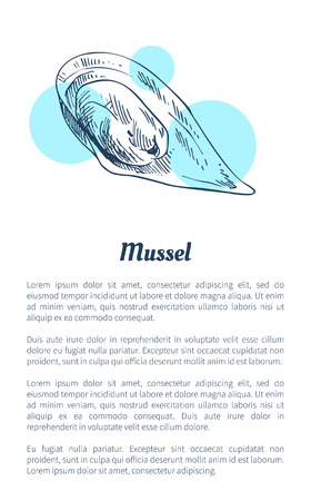 Mussel Seafood Vector Hand Drawn Illustration