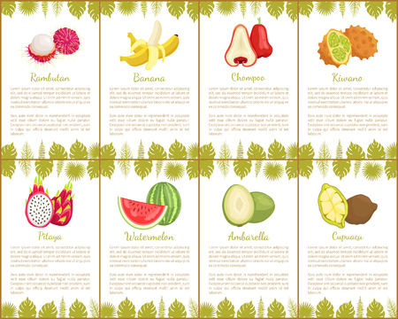 Rambutan and banana with peel, chompoo and kiwano set of posters with text sample vector. Pitaya and watermelon with seeds ambarella fruit and cupuacu Illustration