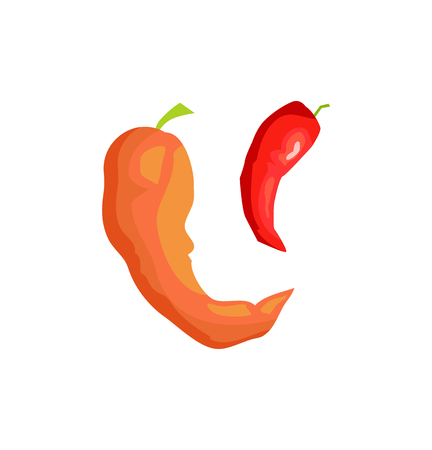 Pepper preserved vegetables icon closeup. Spicy and sweet chilli plant conservation of meal healthy vegetarian ingredients set isolated on vector Ilustrace
