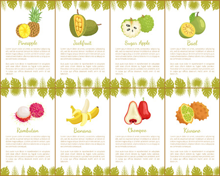 Pineapple and jackfruit, tropical exotic fruits posters with text sample set vector. Banana and chompoo, kiwano and rambutan, sugar apple and bael Foto de archivo - 127558819